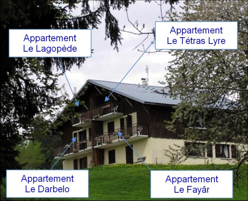 Chalet apparts 1